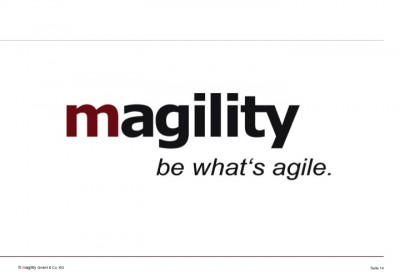 magility Trendstudie E/E Automotive 2014